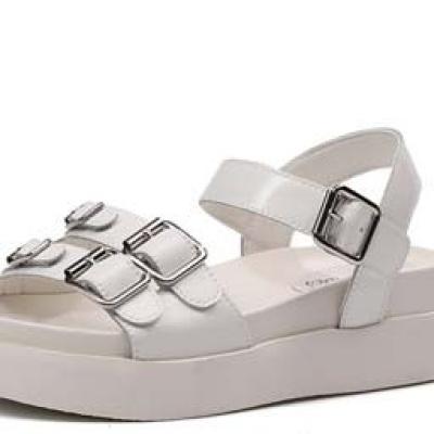hebilla de zapato